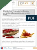 REPORTE-FINAL-APROBADO.pdf