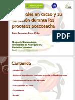 Polifenoles en Cacao