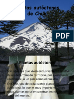 Plantas Autóctonas de Chile