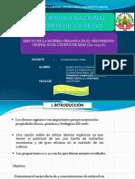 EXPO_AGROTECNIA_INVESTIGACION-11111 (1).pptx