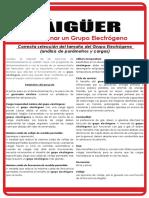 Dimensionar Un grupo Electrogeno TAIGUER.pdf