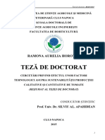 horotan.pdf