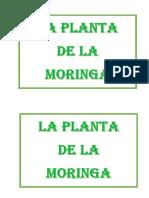 LA MORINGA.docx