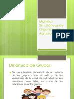 Manejos Simultáneos de Organización y Agrupación.pptx
