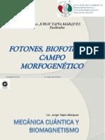 1 5 Fotones Biofotenes y Campo Morfico Agosto 2014