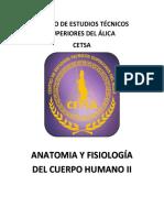 Temario Anatomia II