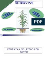 Diseno Agronomico y Planificacion