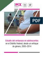 Informe Estudio de Embarazo de Adolescente