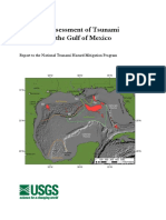 Regional Assessment of Tusanmi Risk Gulf of Mexico ten Brink (2009)