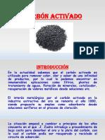 Carbón Activado Exponer 2
