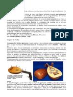 Histria Do Violo - Curso Bsico de Violo1 - Projeto Aprendiz Sc