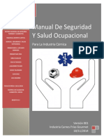 Manual de Seguridad y Salud Ocupacional.,.,