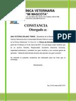 Clínica Veterinaria 2017 Solano