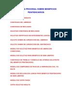 PRACTICA_PROCESAL_SOBRE_BENEFICIOS_PENIT.doc