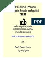 CEEIBS_-_Clase_3_-_Sistemas_Electricos.pdf