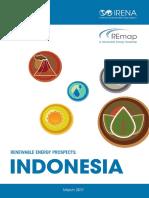 IRENA REmap Indonesia Report 2017