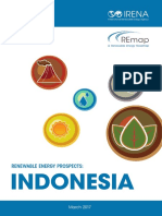 IRENA REmap Indonesia Report 2017