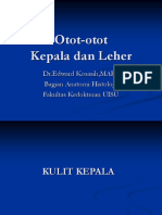 Otot-otot Kepala Dan Leher