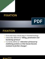 4 - Fixation