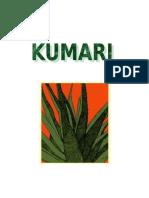 Kumari Final