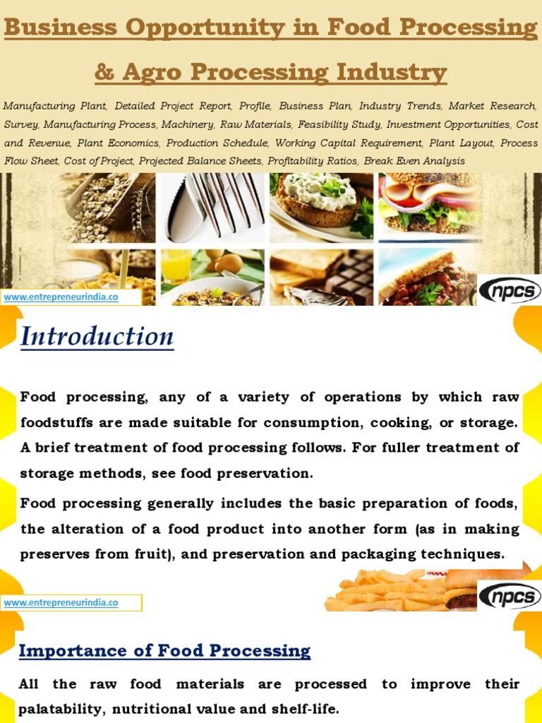 feasibility study of a food product