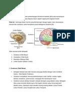 ISL PAKK 3033 Otak Manusia