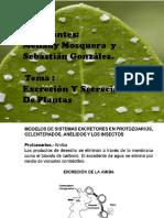 mellany-y-sebastian-1.pptx