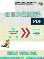 Diapositivas - Ciclo Vital - Final.