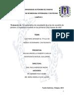 Evaluacion de Los Parametros de Crecimiento de Crias de Cocodrilo de Pantano en Los Primeros Cinco Meses de Vida