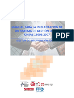 Manual Implementacion Ohsas