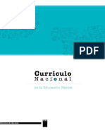 322152073-Curriculo-Nacional-2017-Word.docx