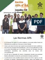 Normas APA 6a Ed.