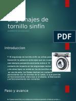 TP-Engranajes de Tornillo Sinfín