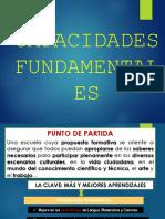 CAPACIDADES PNFP