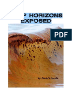 Deep Horizons Exposed