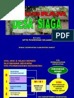 Program Desi