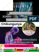 HNE Chikungunya