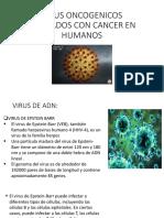 VIRUS ONCOGENICOS ASOCIADOS CON CANCER EN HUMANOS.pptx