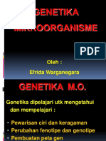 Genetica of Microbial Agent