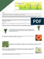 10 plantas que te oxigenan plantas oxigenadoras.pdf