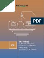 Aproveitamento Energético de Biogás gerado em Estações de Tratamento de Esgotos (ETE)