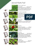 Home remedies -2.pdf
