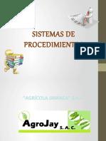 sistemas-AGRICOLA-5 (2)