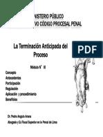 2060_03_terminacion_anticipada.pdf