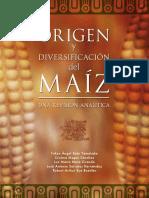 origen_div_maiz.pdf