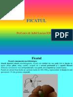 FICAT I.pptx