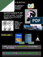 anat-péritoine-DU-2011FILEminimizer1.pdf