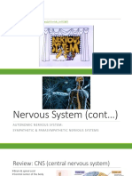 nervous system lesson ppt