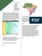 18.10 Colorido _O processo de divisão regional do território brasileiro.doc