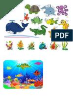 Animales Del Agua